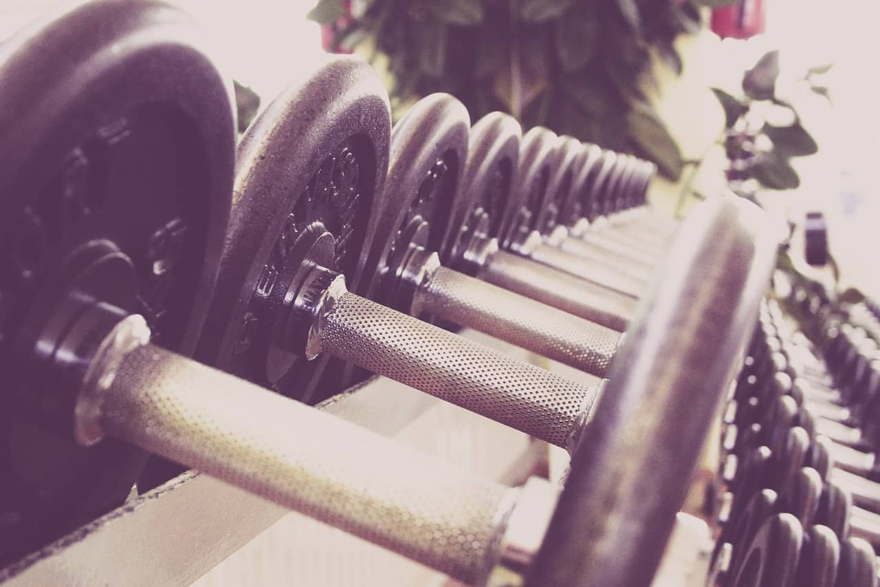 Row of dumbbells that are appropriate for beginner workouts