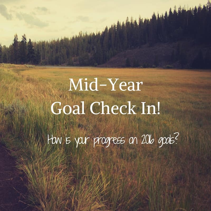 Mid Year Goal Check In