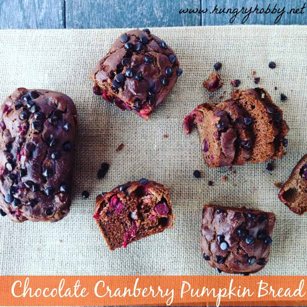 chocolate-cranberry-pumpkin-bread-1024x1024