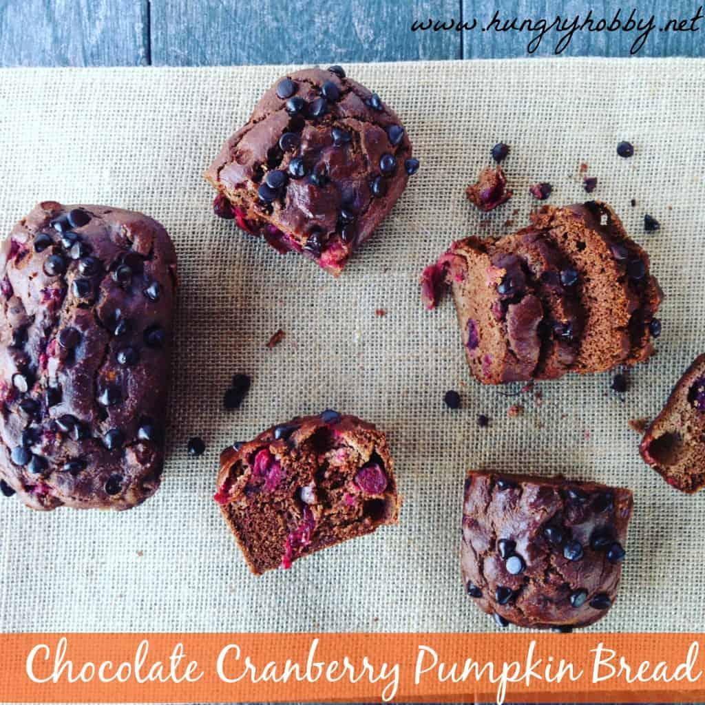 chocolate-cranberry-pumpkin-bread-1024x1024