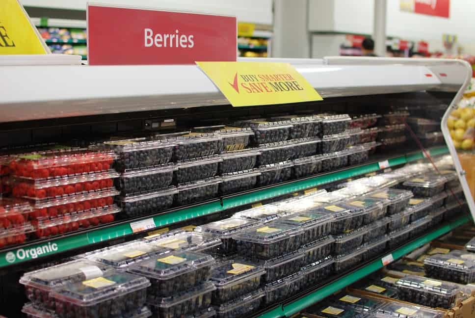 Shopping for Berries at BJ's Wholesale Club
