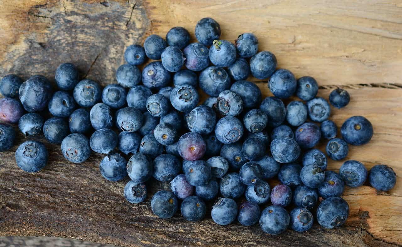 Blueberries for a Runner's Diet