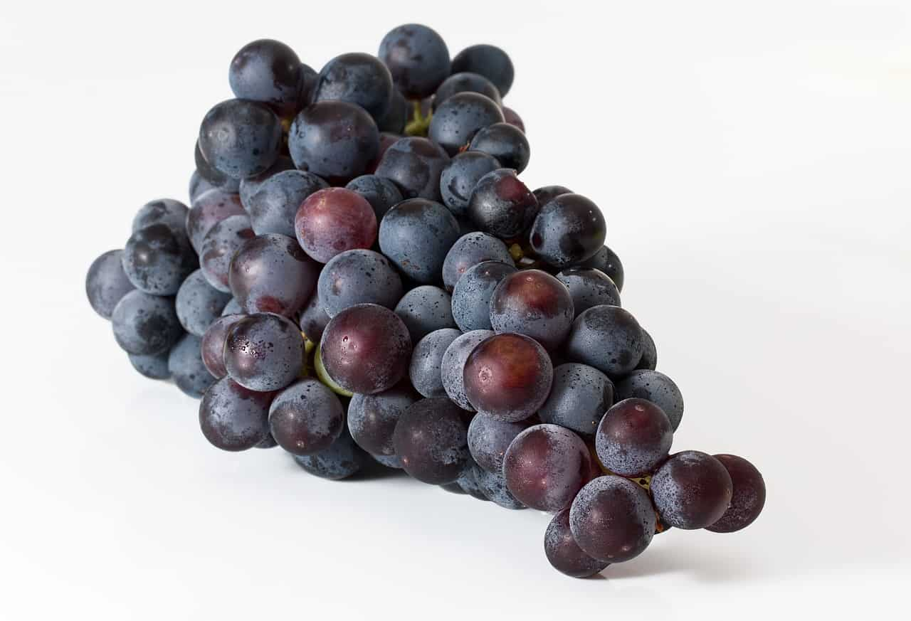 Grapes for a Runner's Diet