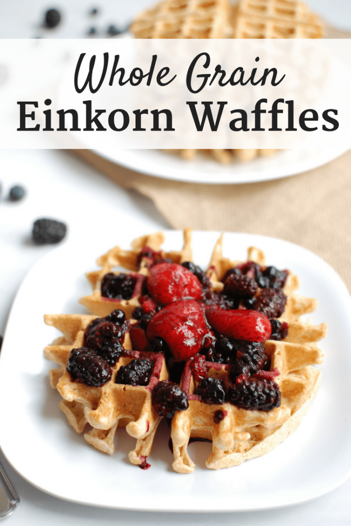 Break out the waffle iron and whip up these tasty einkorn waffles - a perfect wholesome treat for a family breakfast or brunch!