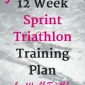 Thinking about World Triathlon Bermuda? Find a free 12 week sprint triathlon training plan here.