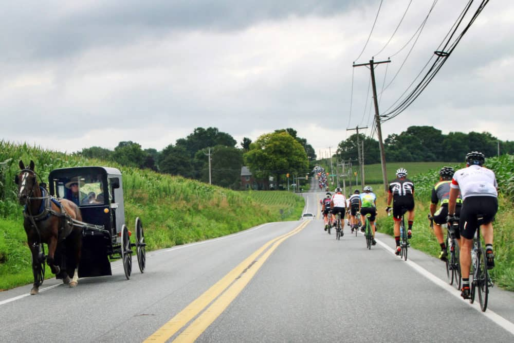Riders on the road during a farm to fork fondo cycling event