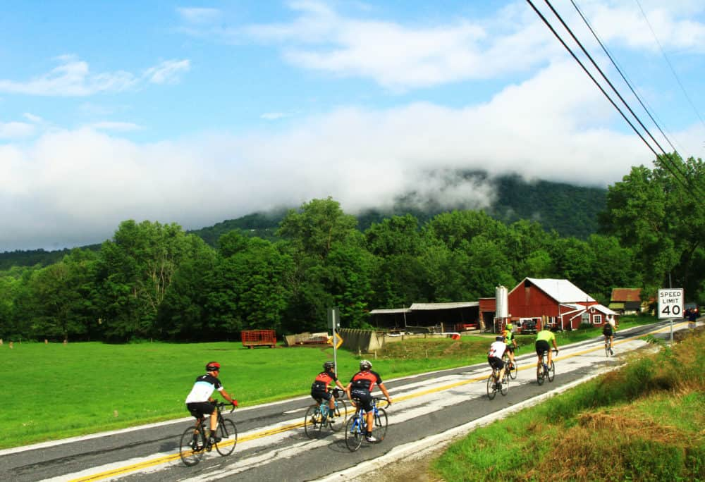 A group of cyclists riding along a quiet country road.
