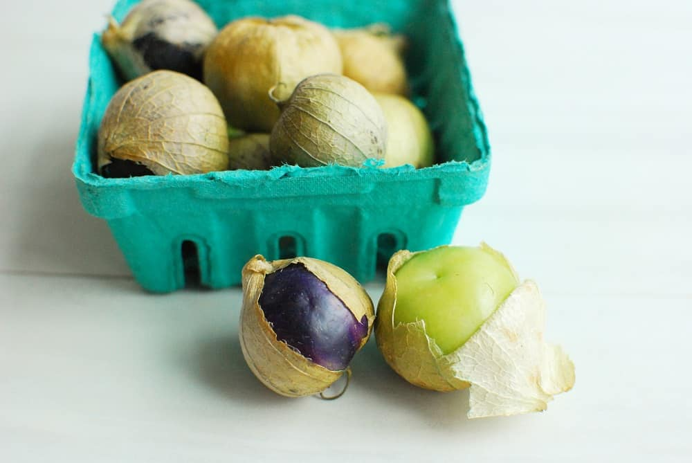 a green and a purple tomatillo still in their husks